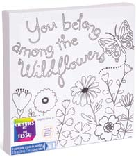 CANVAS KIT FAIRIES 6PAINT PODS AND