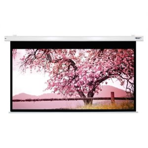 "Hamiltonbuhl 135"" Diag. (66X118) Electric Projector Screen, Hdtv Format, Matte White Fabric"