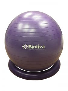 Swiss Ball With Standing Base