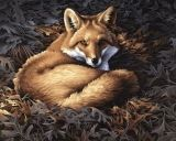 Dimensions 14 Count Cross Stitch Kit - Sunlit Fox - 14 x 11 inches - Makes 1