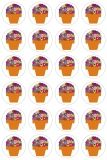 Themed Stickers - 3 sheets - Flower Pots