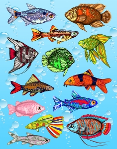 Sticker Forms - Fish - 3 sheets