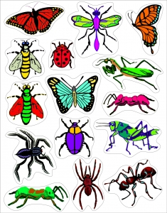 Sticker Forms - Insects - 3 sheets